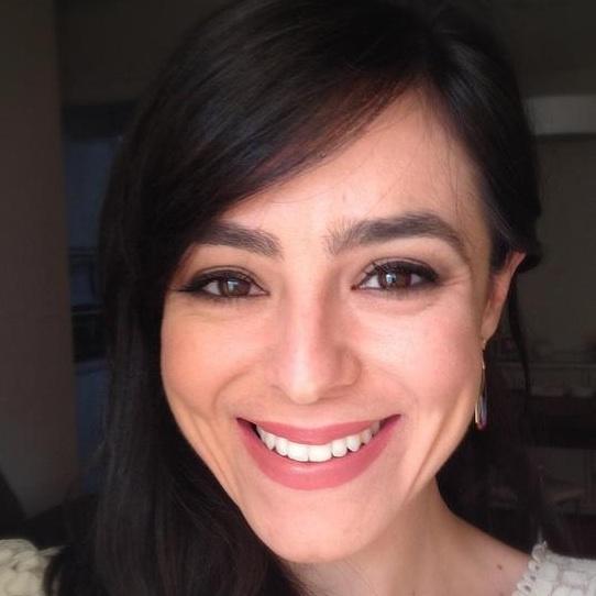 Carol Modenesi